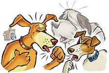 Кашель собак и кошек может быть по ряду причин
